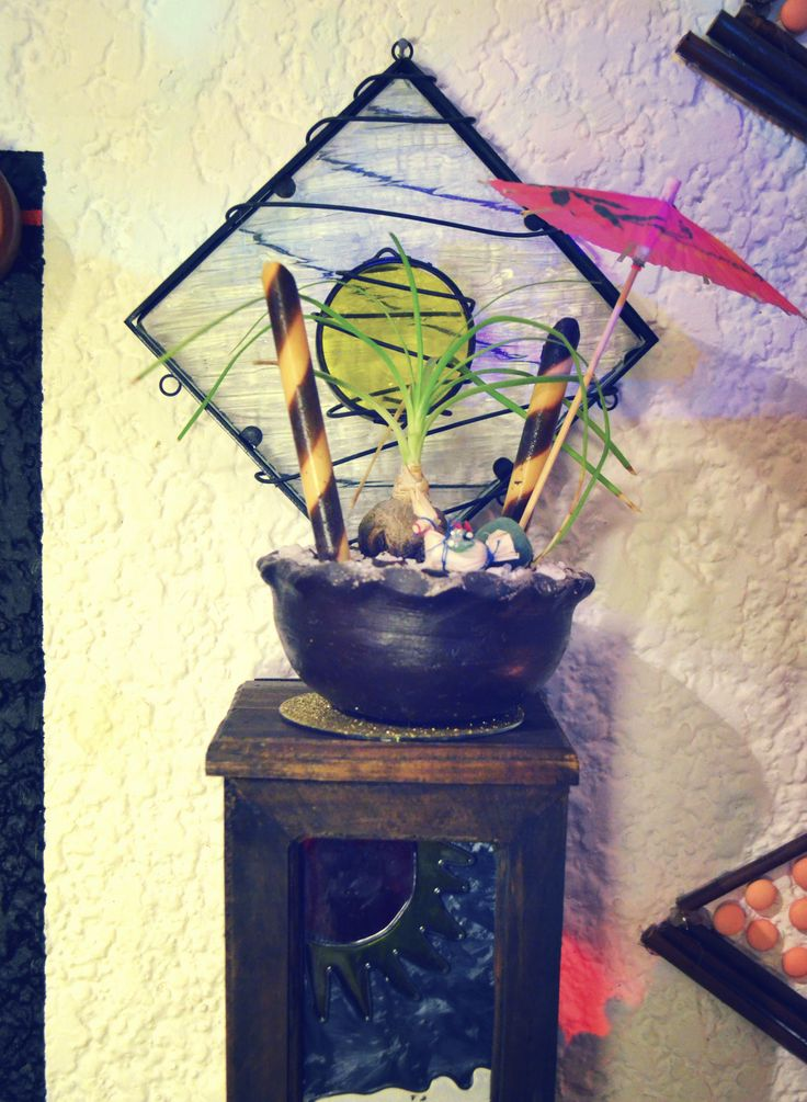 """""""Plant with an Umbrella"""" They gave me this plant at the wedding of a friend, and four years later is still tiny . That umbrella gave a more interesting touch   #Room #EtnoHipster #Mexican #Plants #Umbrela #Mexican"""