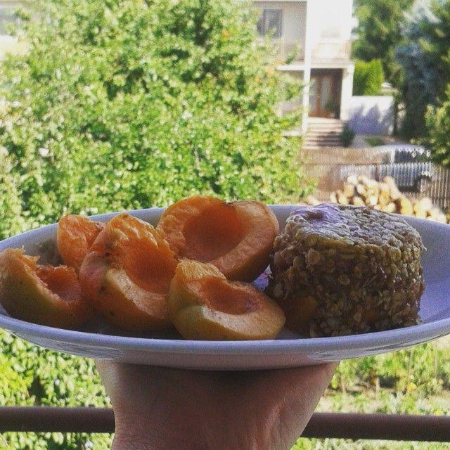 """Good morning a ovocný zdravý muffinek  z našeho soudku """"Na cestě za krásou nám nepomůže jen makeup, ale i spolupráce se zdravým a vynikajícím jídlem""""  1x vajíčko  2x lžíce ovesných vloček  1x lžíce medu  1x hrst ovoce  1x egg  2x dipper  oat- flakes  1x dipper honey  1x handful of fruit #befabulous #photo #brno #fruit #instagram #banana #great#happy #Body#love#beuty #health#fitness#healthylifestyle#lifestyle#food#almonds#breakfast#mango#blackberry"""