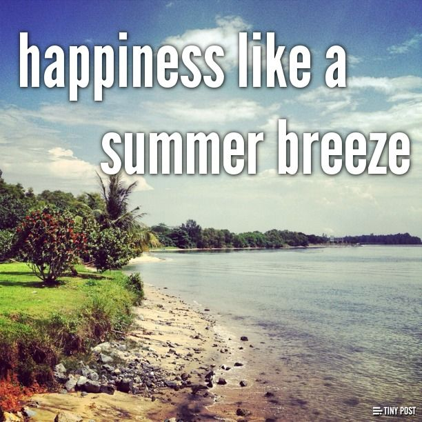 happiness is like a summer breeze