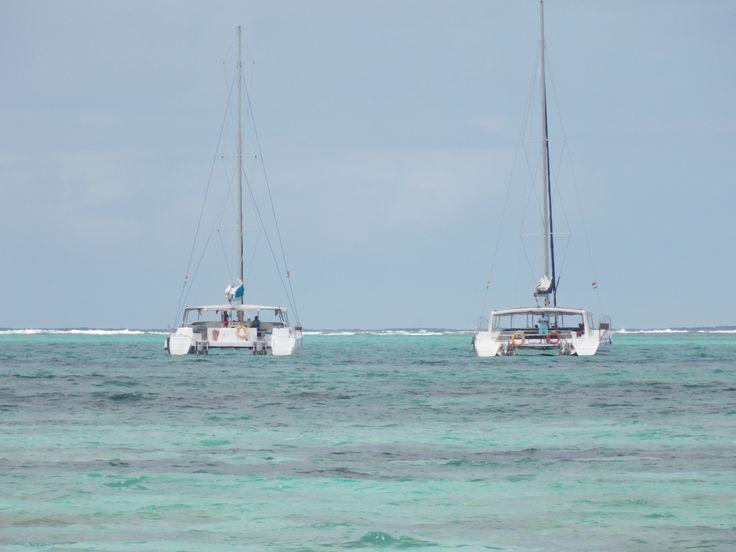 the catamaran trip