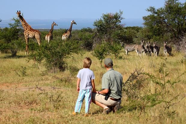 Yes, you can take a six-year-old on safari