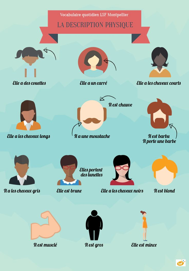 French vocabulary - Physical description