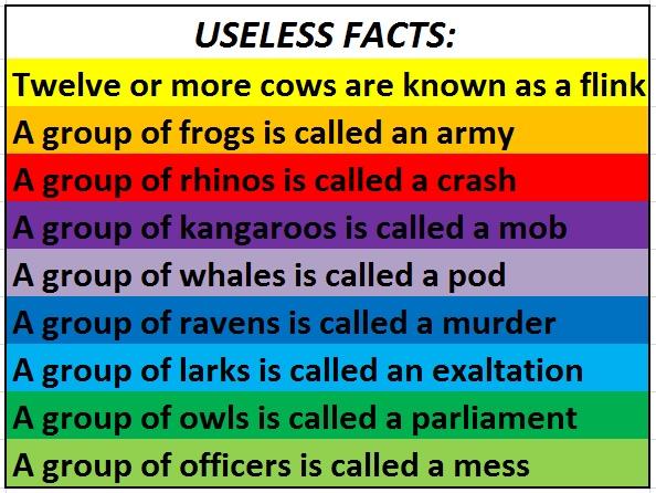 Examination of Russell's vs Descartes's