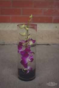 Only Orchids, Mini Underwater Orchid, Designed by Best Buds Flower Company