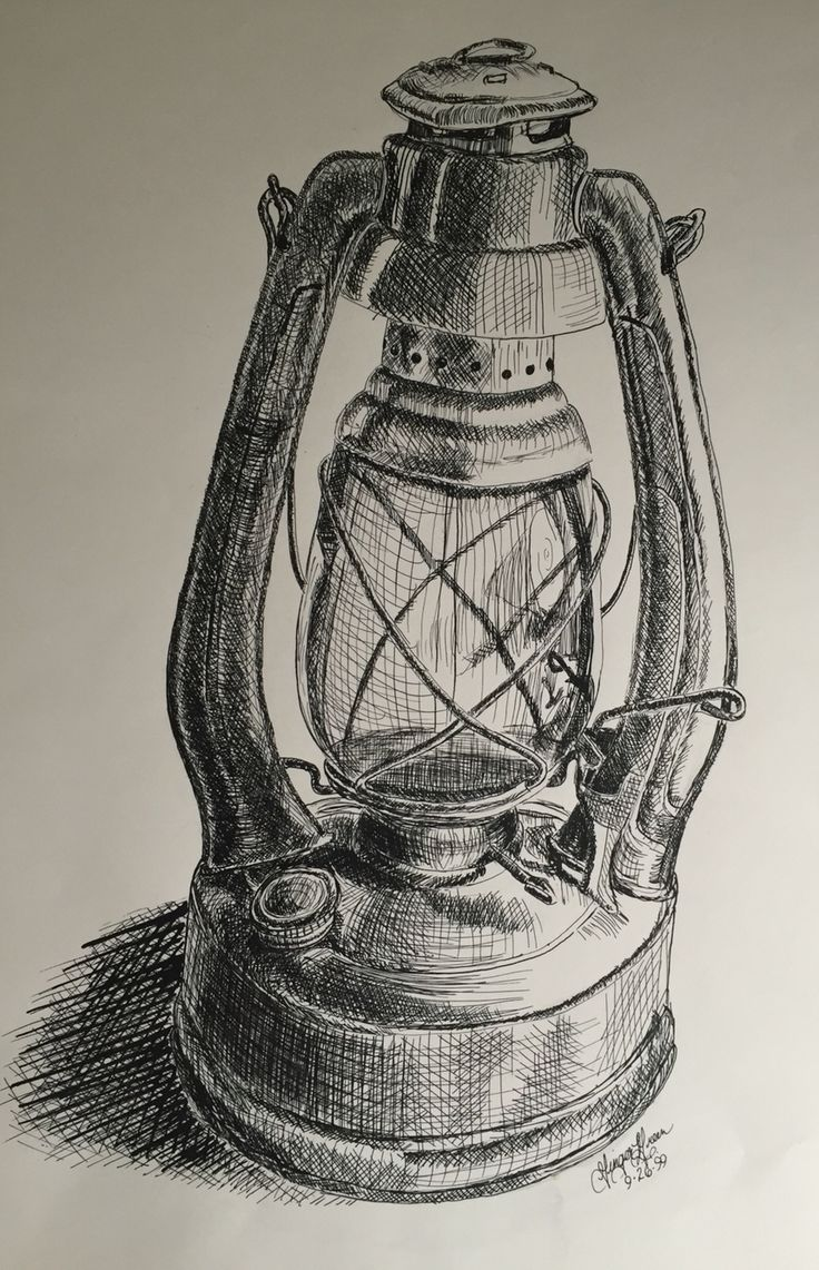 Study of still life using pen and ink
