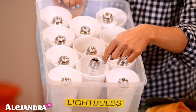 Basement Storage Tip: Keep light bulbs organized & damage free with this DIY bulb organizer #AlejandraTV