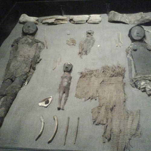 Momias Chinchorro from the South American Chinchorro culture. Most of the Chinchorros found so far have been children.