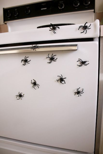 Glue magnets to the backs of plastic spiders for an easy Halloween decoration for the kitchen.