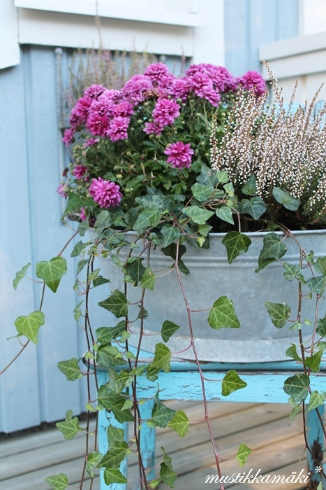 ♥ jardiniere hiver