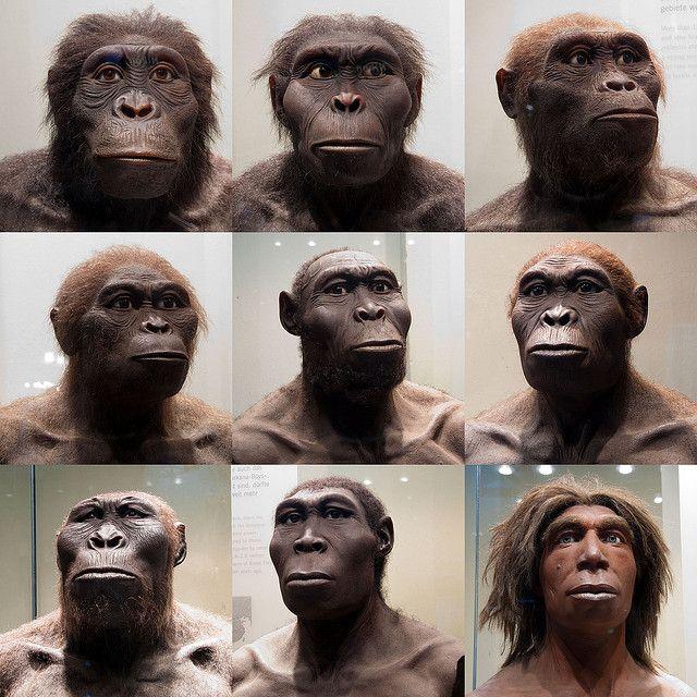 Human Ancestors by Sebastian Niedlich (Grabthar), via Flickr
