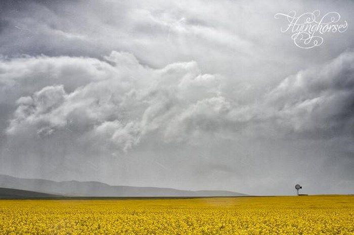 30 Photos that will make you want to #discoverOverberg