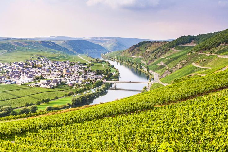 Enjoy a relaxed cycling holiday through Germany's most famous wine growing area…