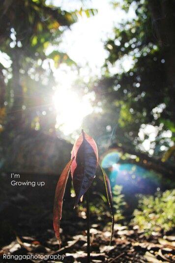 I'm grow up. By ranggaphotography.