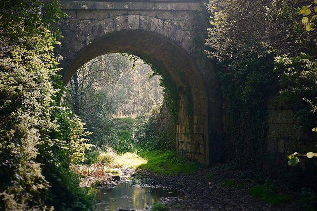 Old bridge on the Camino de Santiago de Compostela - The Way of Saint James