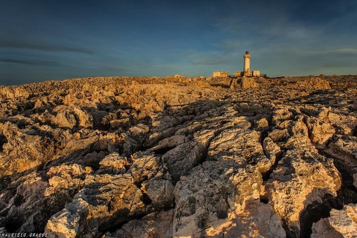 Area marina protetta del Plemmirio nei pressi di Siracusa - Foto di Maurizio…