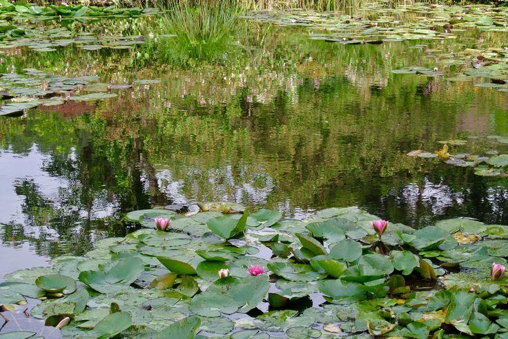 Egy délután Giverny-ben