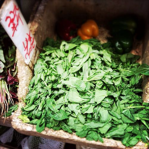 Stir Fry, Chinese, Pea Shoots, pea tips, dou maio,  pea vines, pea shoots, 炒, 豆苗, recipe, vegetable