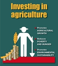 FAO Media Centre: FAO calls for farmer-centred approach to investment in agriculture