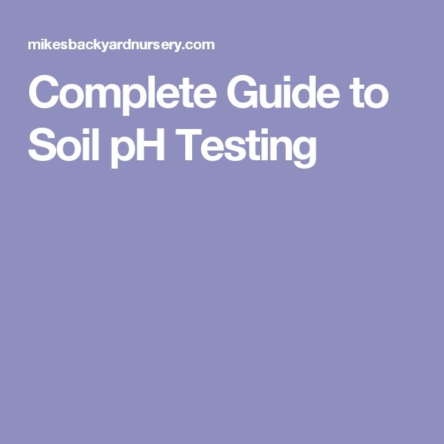 Complete Guide to Soil pH Testing