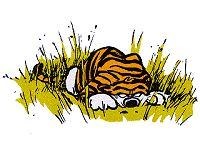 Calvin and Hobbes animated gif... watch out Calvin!
