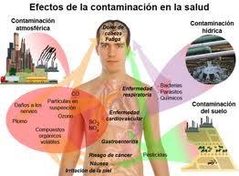 osCurve Oikos: Contaminación con mercurio: Efectos neurológicos  http://oscurve-oikos.blogspot.com