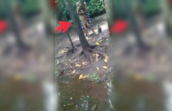 Video Kakek Siksa Cucu Diumpankan ke Monyet di Pasuruan Jadi Viral