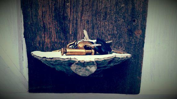 Nature's Shelf  Tree Conk on Barn Wood by originalcitybarn on Etsy