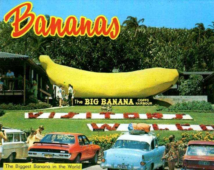 Big Banana 1960s postcard