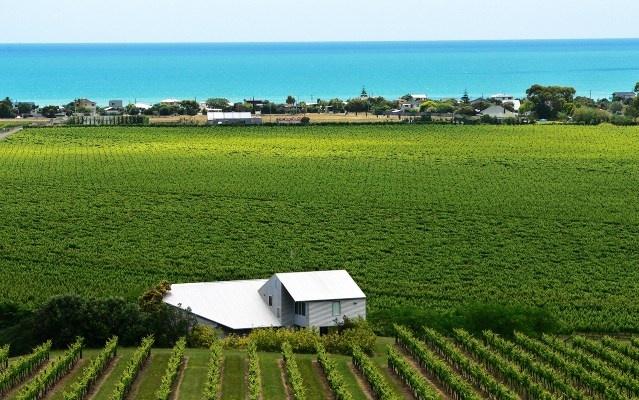Te Awanga Estate Wines, Hawkes Bay, NZ