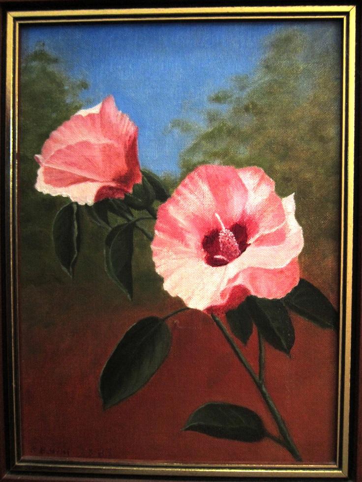 Sturts Desert Rose, Oil