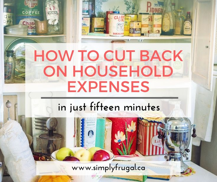 If you are finding yourself strapped for cash, it may be time to look at your regular household expenses. Often we are paying for items we aren't even using, don't need, or could use less of. So how can you cut back on your household expenses without feeling like you are giving everything up? Luckily, you can do this in just minutes a day. Look at these tips on how to cut back on household expenses in just 15 minutes, so you can free up some cash and find some relief from living paycheck to…