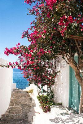 fototapeta na ścianę Aleja na tradycyjne greckie wyspy, Grecja Sifnos