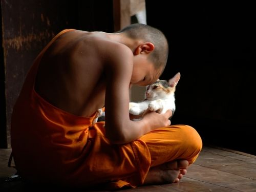 little monk plays with his new friend in the monastery. by Alessandro