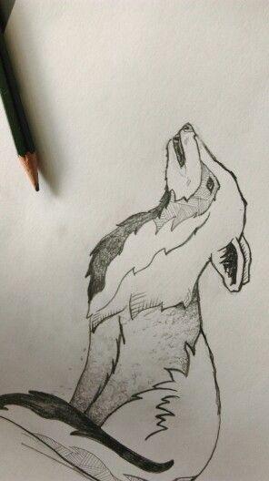 Sketching wolves ©Felia Brücker