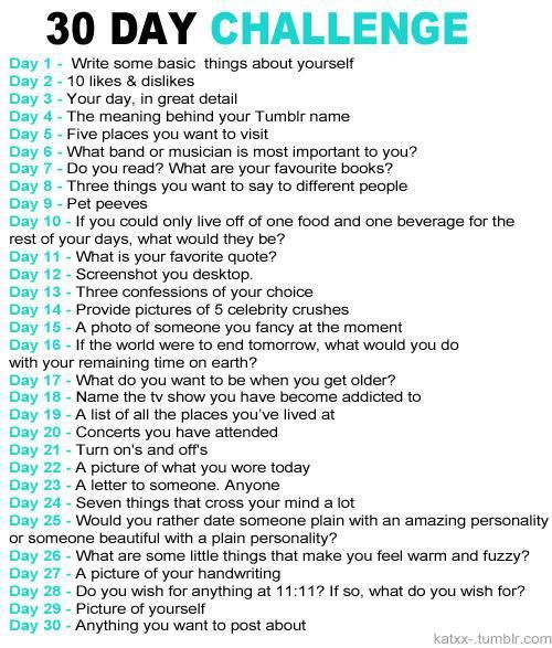 Hollywood Cerise: 30-Day Blog Challenge- I'll do this just for myself. I think if I do this every year in December, it will be a good way to see how I change throughout my life- even though I'm thinking way into the future.