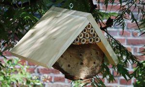 Wer ein Insektenhotel bauen will, braucht dafür kein teures Material kaufen, die allermeisten Materialien fallen im garten kostenlos an