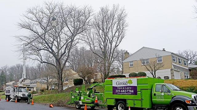 Safety, health and beauty are the primary reasons for tree trimming! Jack Morvin, Tree Climber, cleans out an old Maple tree in Elkins Park on a foggy day. Picture taken by Robert Nagy, Giroud Arborist.  #giroudtreeandlawn #treebiz #treeremoval #arborist #treeservice #arblife #climblife #treesurgeon #arboriculture #climbing_pictures_of_instagram #welovetrees #treecompany #safetyfirst  #philadelphia #abington #roslyn #cheltenham #elkinspark #melrosepark #jenkintown #rydal #meadowbrook…