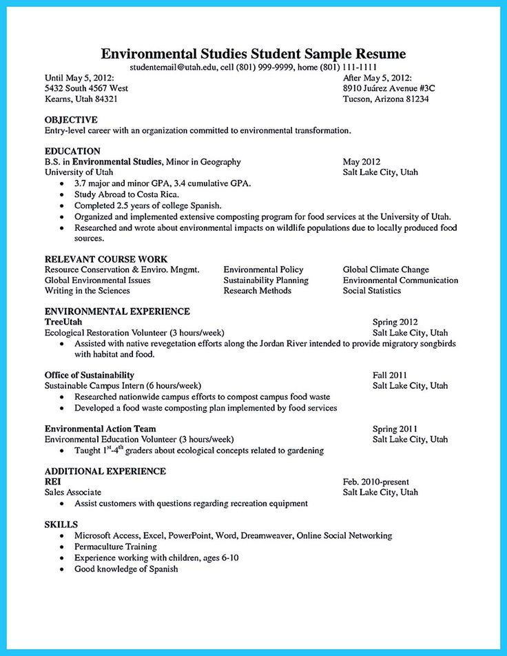 Best Resume Samples Images On   Resume Templates Make