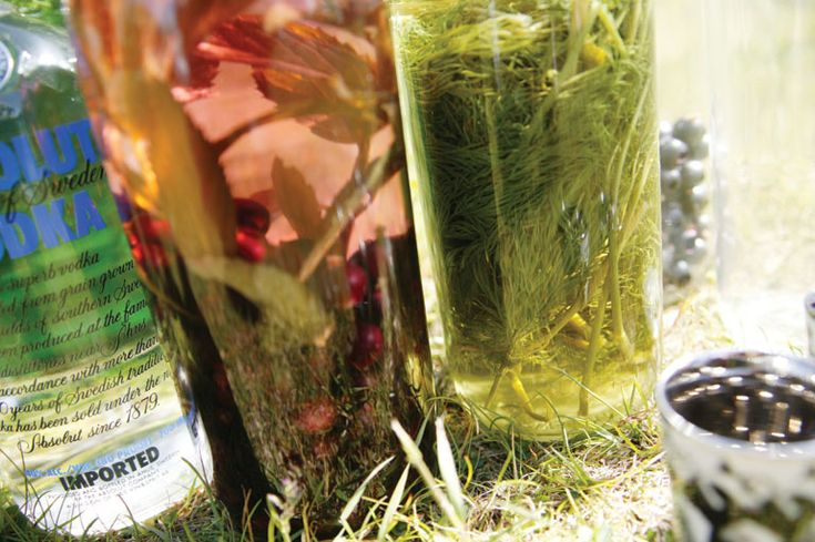 Servings: 8 PREPARATION: 1Simply press as much dill as you can into a bottle -- it is supposed to be absolutely packed with dill! 2Add the sugar cubes and pour in the ABSOLUT VODKA. 3Let it rest four about one week. Ingredients 1 bottle (25 ounces) ABSOLUT VODKA 1 big bunch of dill 2 sugar…