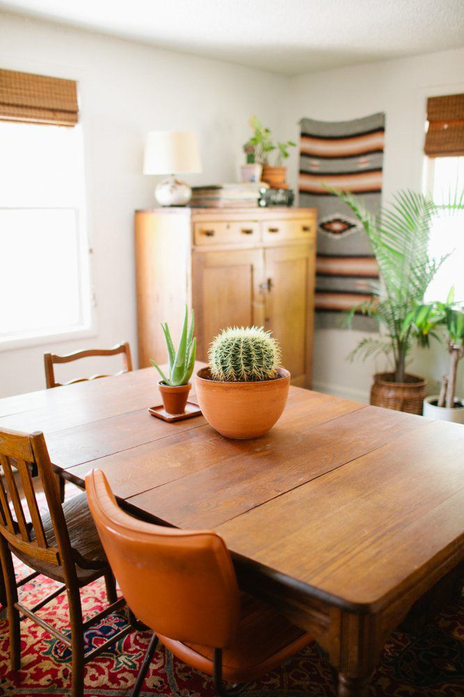 oh love this- rug on the wall, lots of plants, mismatched chairs.