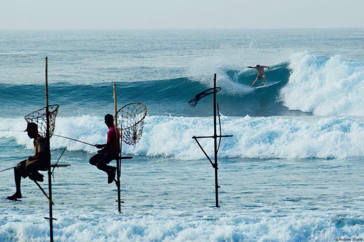 Comme chaque semaine, la rubrique Destination Surf Trip vous propose un idée de voyage. Découvrez le Sri Lanka.