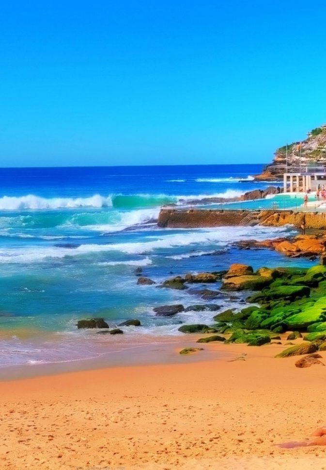 Bondi Beach , New South Wales, Australia: