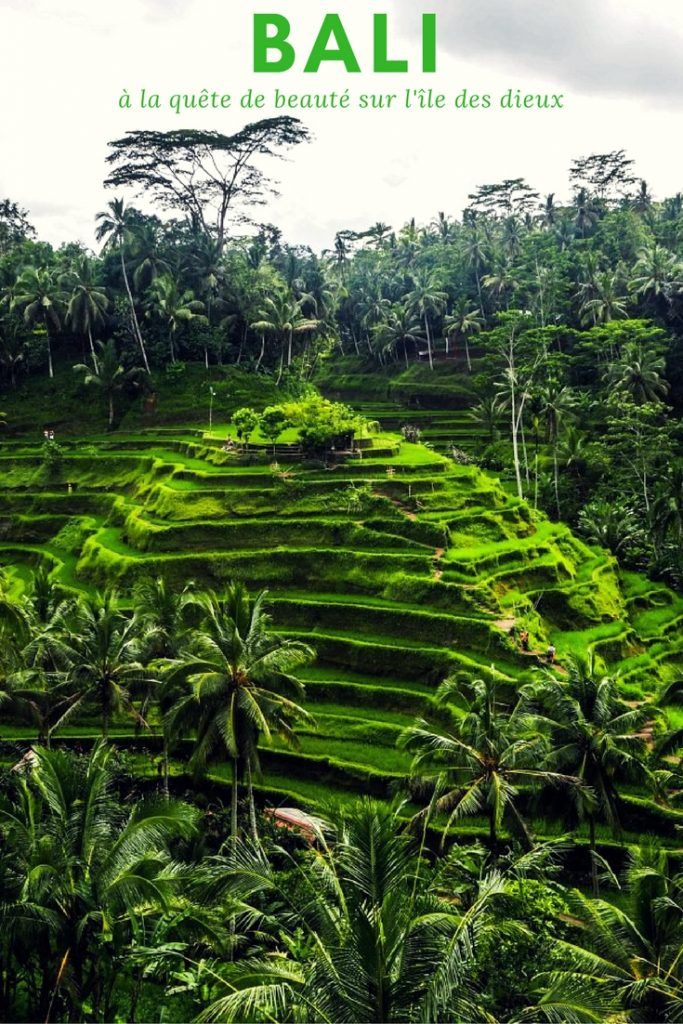 Voyager à Bali: à la quête de la beauté sur l'île des dieux, photographie et récit de voyage