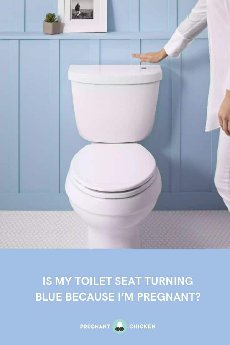 Is My Toilet Seat Turning Blue Because I M Pregnant Toilet Pregnant Chicken Turn Blue