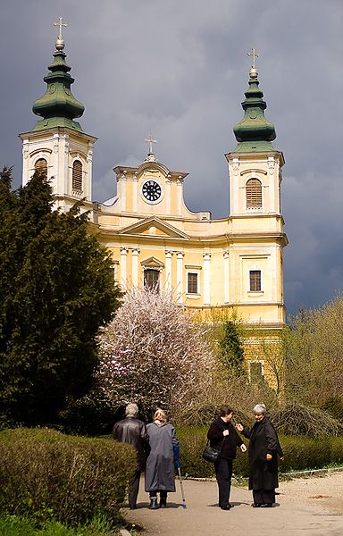 Spring in the gardens of the Roman Catholic Cathedral, Oradea, Bihor, Romania