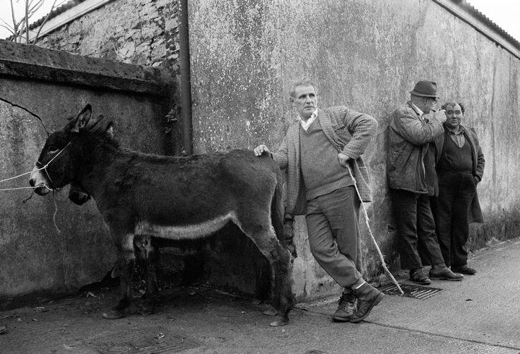 © Martin Parr/Magnum Photos IRELAND. Ballaghaderreen. Ballaghaderreen Fair. County Roscommon. 1983.