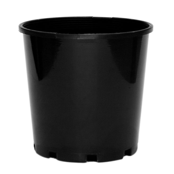 Black porno black plastic pot japanese nude