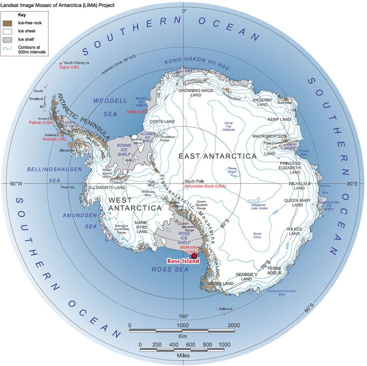 13 best evies antarctica assignment images on pinterest adelie land map google search publicscrutiny Images