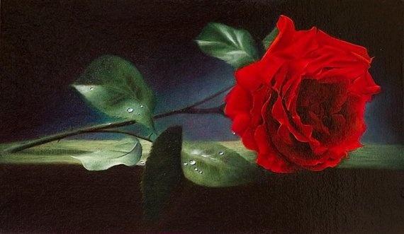 guns abd roses