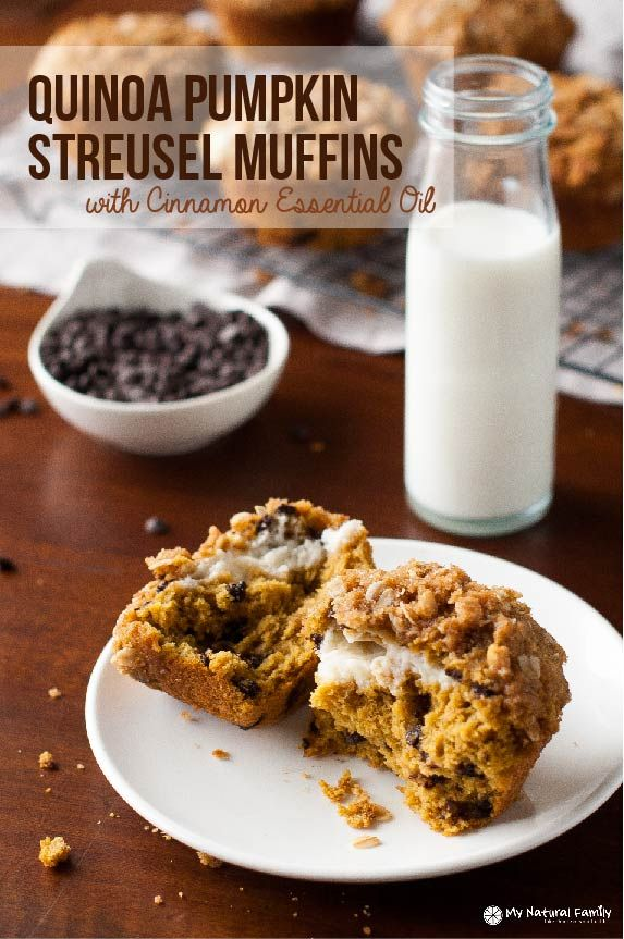 Alright, folks! This was one of my favorite recipes to make! I was drooling the whole time I was making these quinoa pumpkin muffins and couldn't wait to eat them. I was NOT disappointed with the results and was so excited because they are full of good ingredients for me! I was nervous because I …